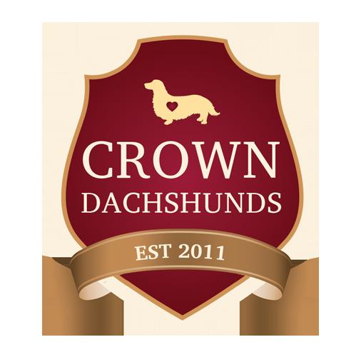 Crown Dachshunds